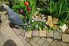Bloemenhoekje bij de vijver