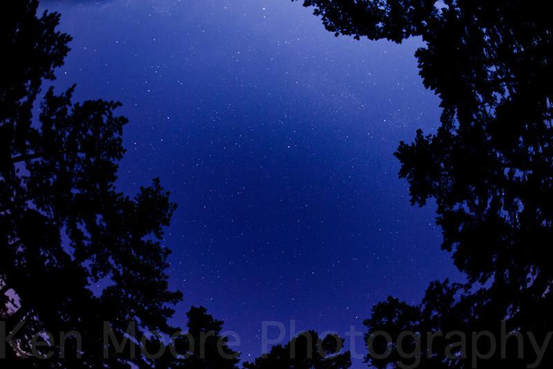 20110717-222811-_DSC5897