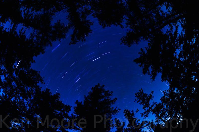 20111125-002529-_DSC9790-Edit-Edit