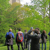 NYC Audubon Bird Walk - Central Park