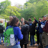 NYC Audubon Bird Walk- Central Park