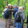 NYC Audubon Central Park Bird Walk