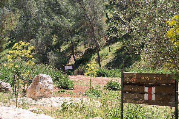 Nahal Yizpor