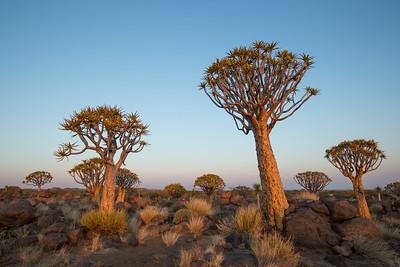 20130618_Namibia_113