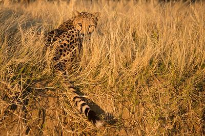 20130522_Namibia-140