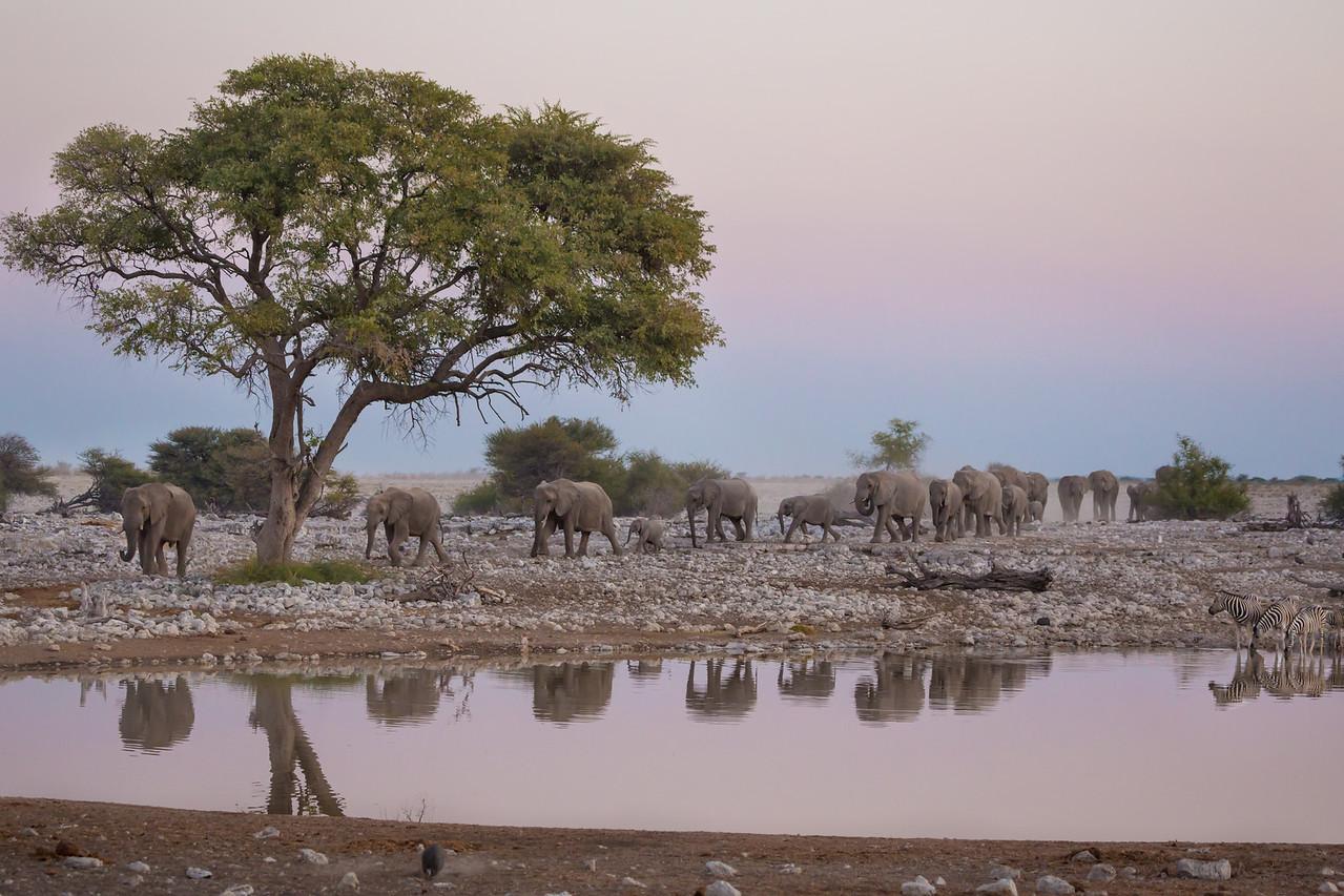 20130601_1_Namibia_089