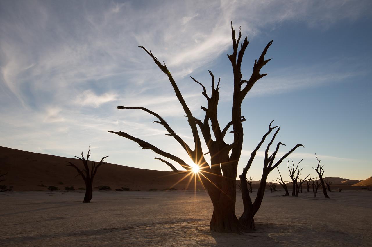 20130527_1_Namibia_112