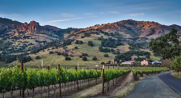 Napa Valley Area