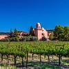 Napa area vineyard