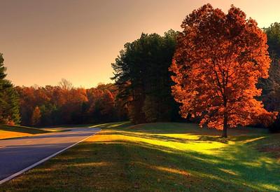 Autumn colors HDR