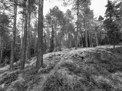Kaukaloistenkallio hillside view