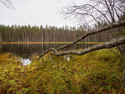 Seitsemisen kansallispuisto - Seitseminen National Park