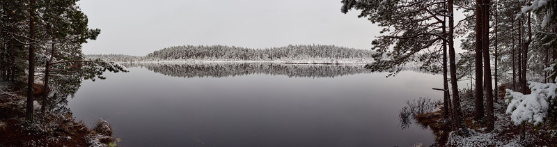 All Colors of Gray. Panorama