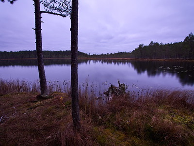 Kirkas Soljanen at dawn
