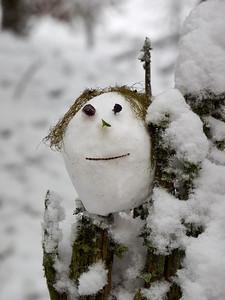 Creature of winter