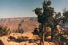 A view of the Grand Canyon from the south rim, taken in 1992.