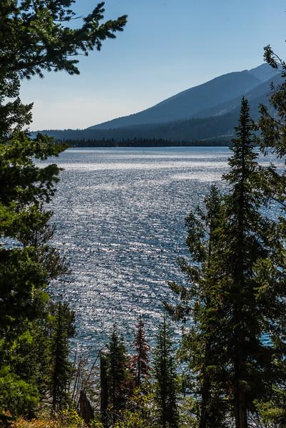 Yellowstone - First Pass-13
