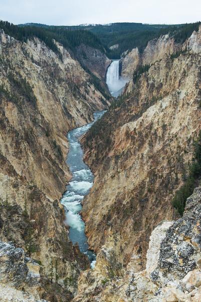 Yellowstone - First Pass-34