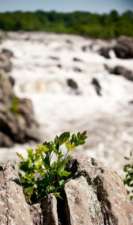 Great Falls 09 - -51