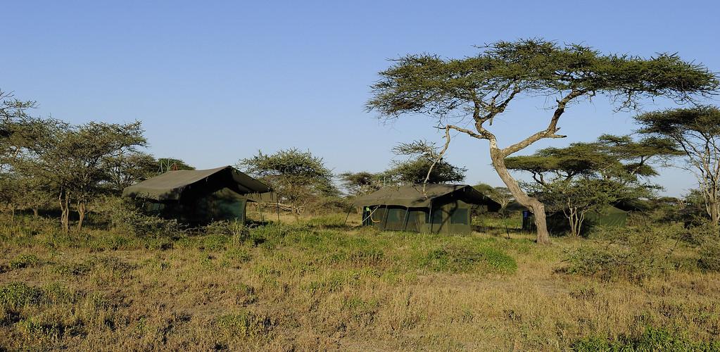 Ndutu Wildland Camp