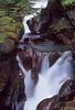 Avalanche Creek Gorge, Glacier NP