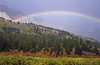 Clearing Rainstorm, Canadian Rockies