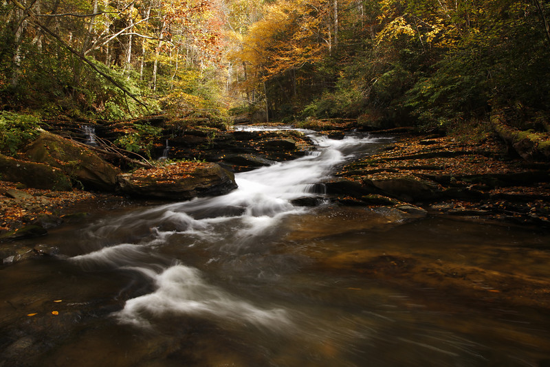 Autumn Tranquility. Mill Creek. Hawks Nest State Park, WV