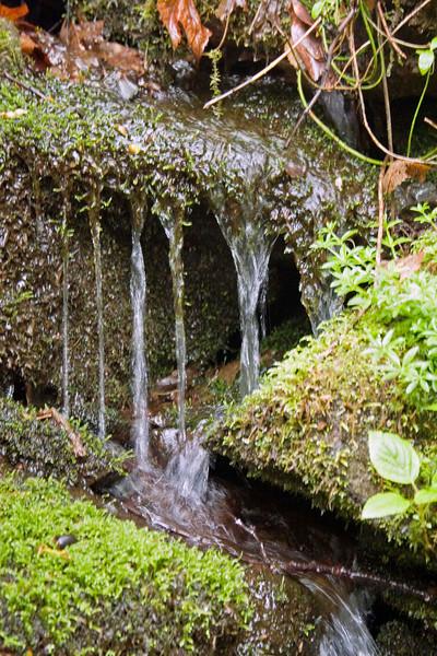 Water flowing over rock