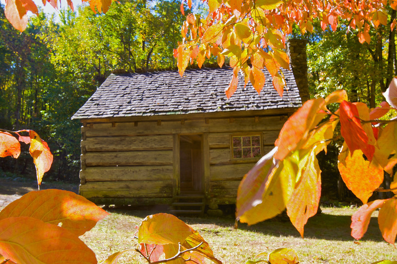 Cabin and fall color leaves