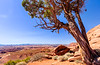From Grand View Point, Canyonlands National Park, Island In The Sky section