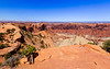 From Upheaval Dome Viewpoint one, Canyonlands National Park, Island In The Sky section