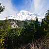View of Mt Rainier, Mt Rainier National Park