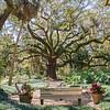 Washington Oaks State Park garden