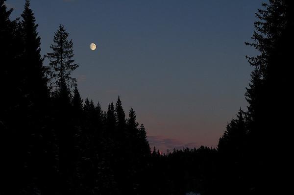 Snart Fullmåne..18.11.2010