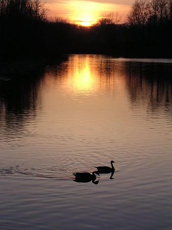 Sunset at Centennial 3-29-04