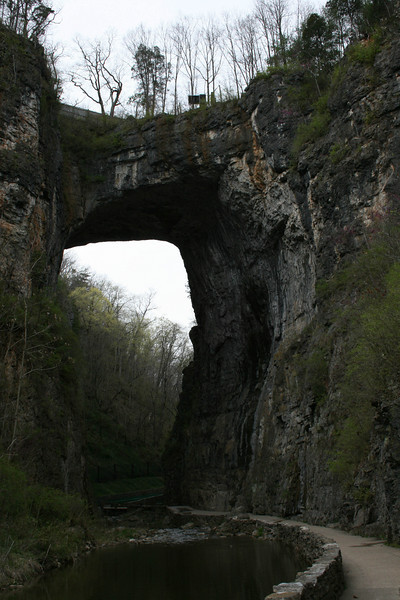 Natural_Bridge-11