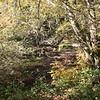 Lauganitas Creek
