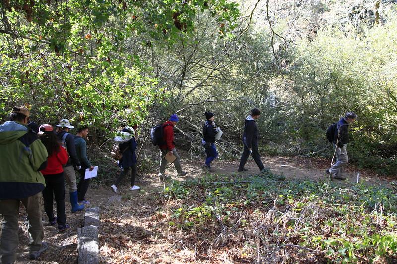General Ecology class at Lauganitas Creek in Samuel P. Taylor State Park on November 3, 2019