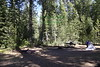 Mill Creek Campground on Hwy 108 near Sonora