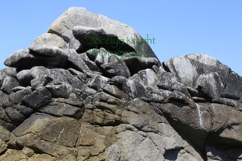 Zonation on rocks shows bird guano and Varicaria