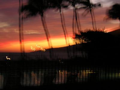 Maui 2005 018
