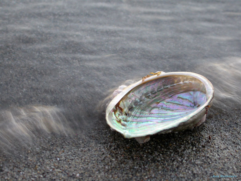 Arrastrada por las olas