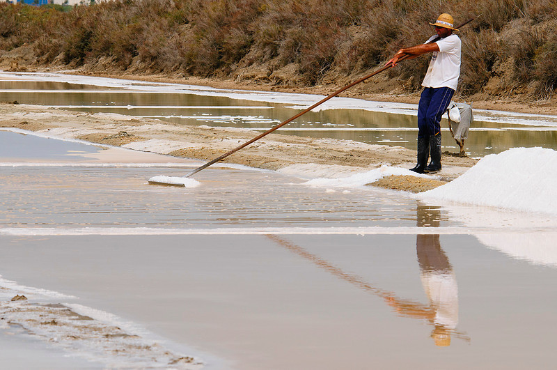 Extracción de la sal