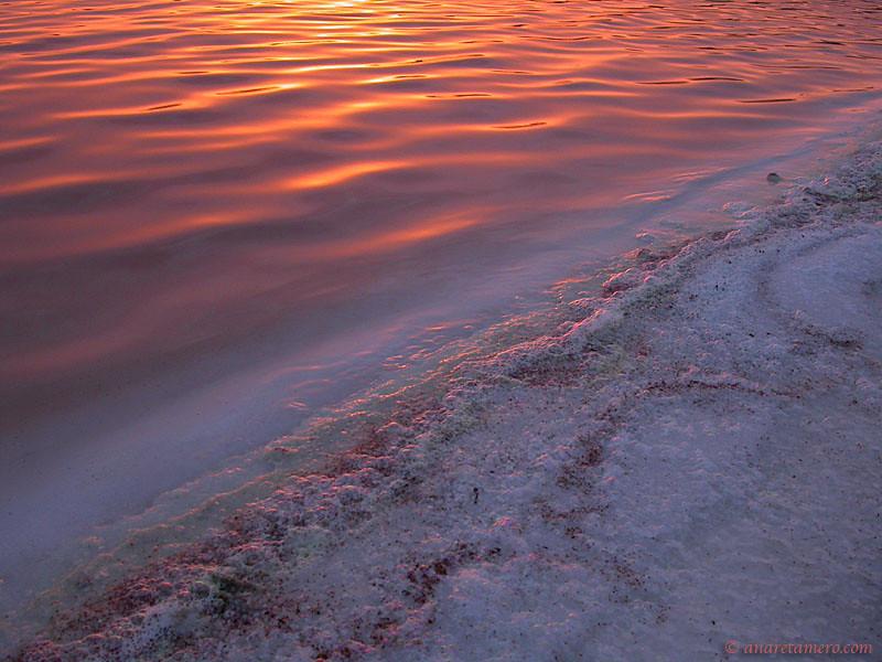 Salt pan shore
