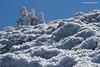 Pinsapos, enebros y erináceas nevadas