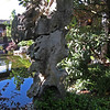 Chinese Garden, Portland