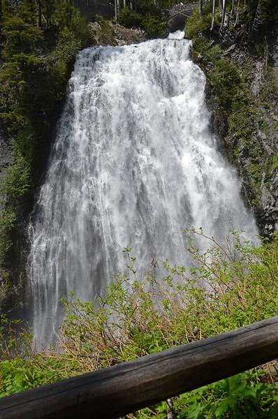 Rainier - Narada Falls