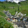 Myrtle Creek & Mt. Rainier