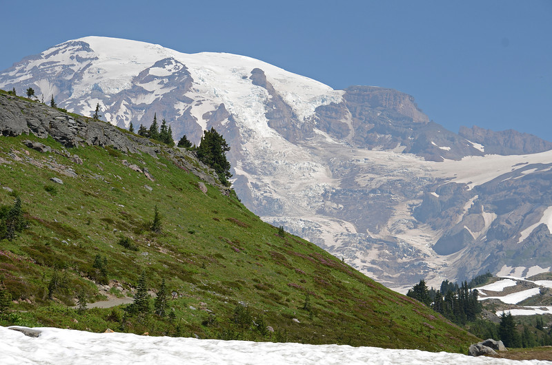 Mt. Rainier from Alta Vista Trail 5940 ft.