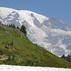 Mt. Rainier from Alta Vista Trail 5940 ft.